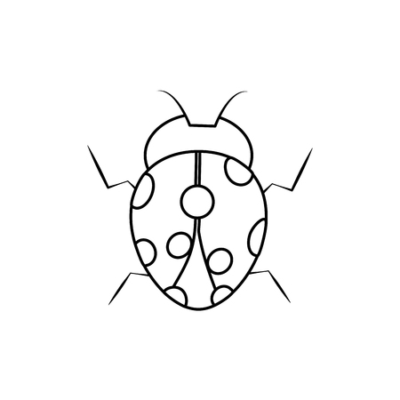ladybug insect bug icon image vector illustration design black line black line
