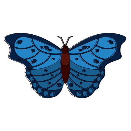 蝶虫バグアイコン画像ベクトルイラストデザイン