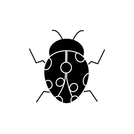 Ladybug insect bug icon image, vector illustration.