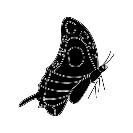 Vlinder insect pictogramafbeelding, vectorillustratie.
