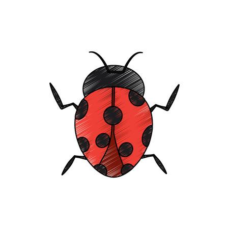 レディバグ昆虫バグアイコン、ベクトルイラスト。