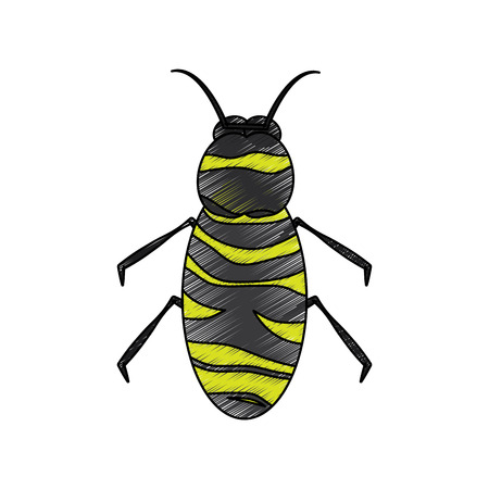 insect bug icon image, vector illustration. Illustration