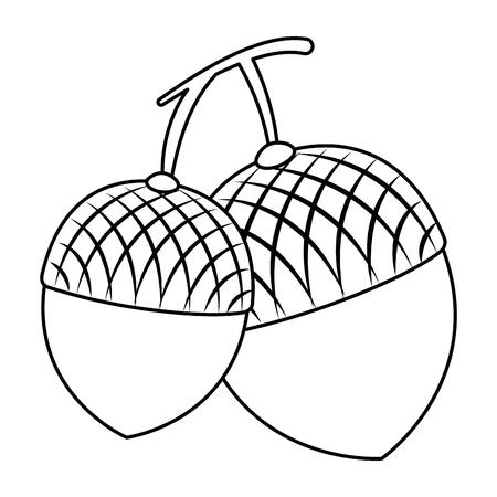 Het pictogramontwerp van notenvruchten geïsoleerd pictogram Stockfoto - 91075830