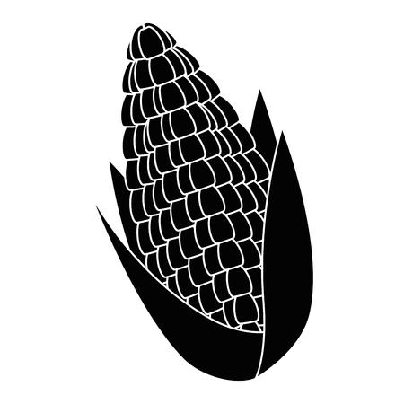 옥수수 신선한 격리 된 아이콘 벡터 일러스트 디자인 스톡 콘텐츠 - 91076113