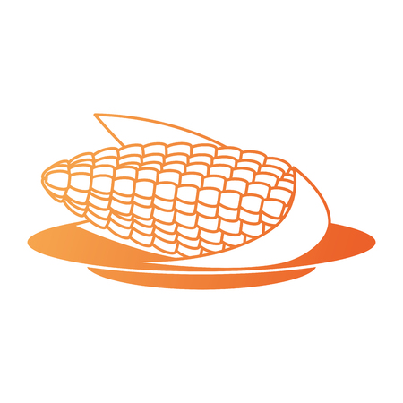 corn fresh isolated icon vector illustration design Stok Fotoğraf