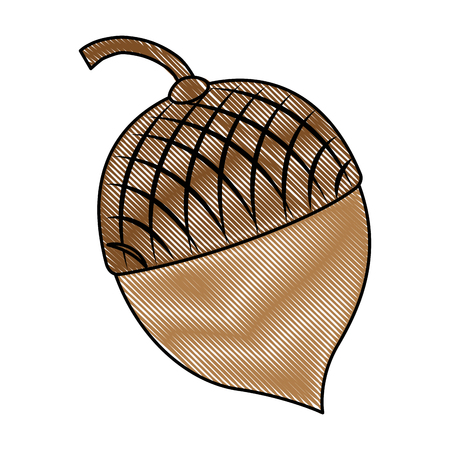 Frutas frutos secos aislado icono de ilustración vectorial de diseño Foto de archivo - 91081436