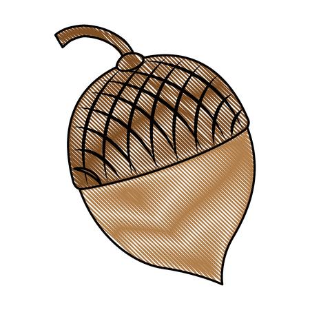 Het pictogramontwerp van notenvruchten geïsoleerd pictogram Stockfoto - 91081436