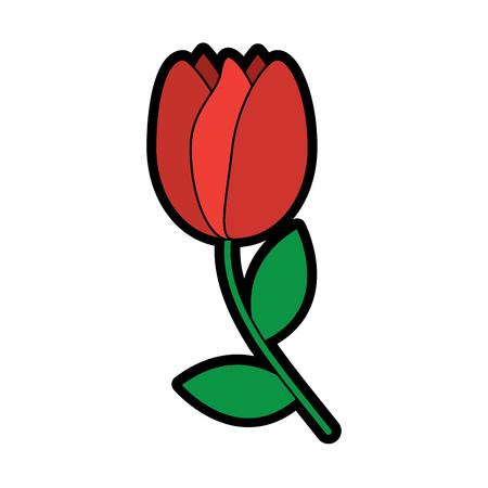 Tulip flower illustration. Ilustração