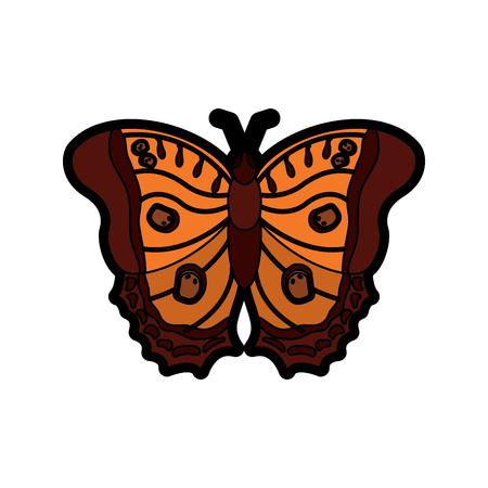 bovenaanzicht van prachtige monarch vlinder vector illustratie