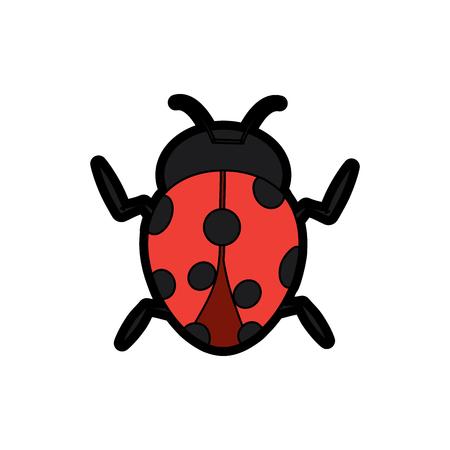 무당 벌레는 절지 동물 곤충 단일 아이콘 벡터 일러스트 레이션