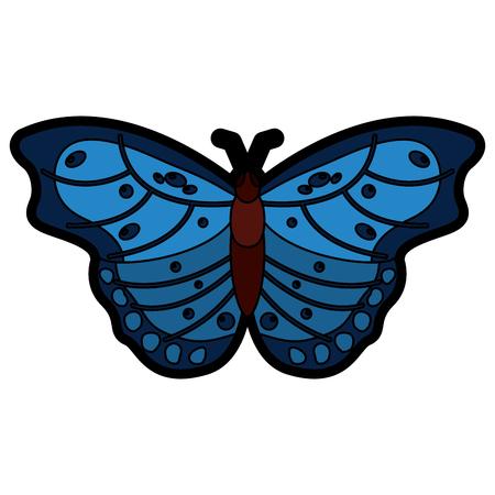 美しい蝶昆虫動物ベクトルイラストのトップビュー