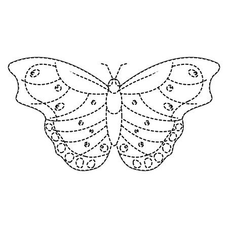 top view of beautiful butterfly insect animal vector illustration sticker