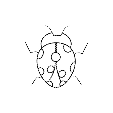 Ladybug arthropod insect single icon. 向量圖像