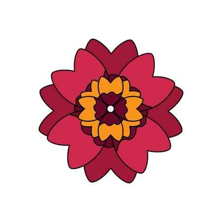 Een mooie rode bloem en bloemblaadjes bloemenontwerp vectorillustratie