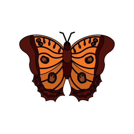 A top view of beautiful monarch butterfly vector illustration
