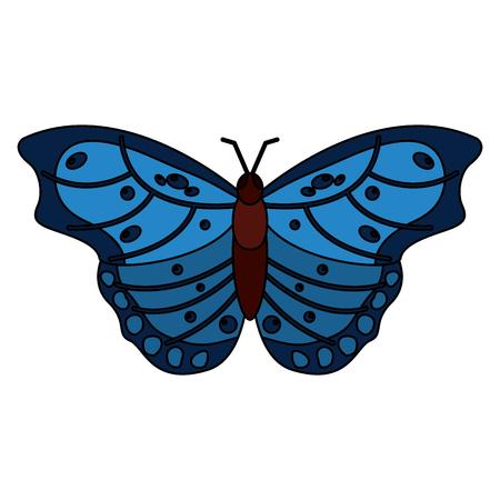 Een bovenaanzicht van prachtige vlinder insect dier vector illustratie