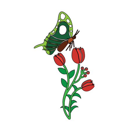 A nature blossom branch of red flowers and butterfly vector