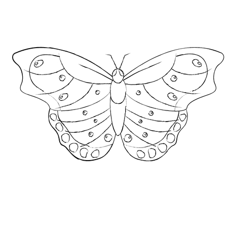top view of beautiful monarch butterfly vector illustration