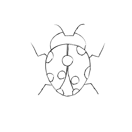 ladybug arthropod insect single icon vector illustration Иллюстрация
