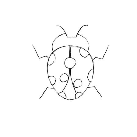 ladybug arthropod insect single icon vector illustration Illustration