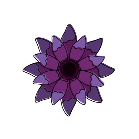 beauty violet flower floral natural bloom petal vector illustration