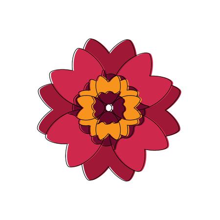 beautiful red flower and petals floral design vector illustration Ilustração