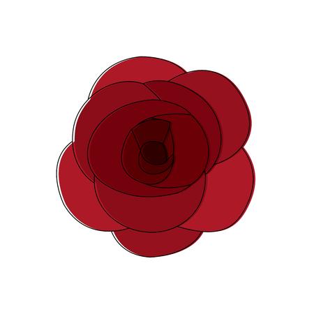 Rose flower ornament floral petal nature vector illustration