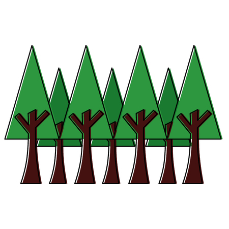 pine trees foliage vector illustration Illustration