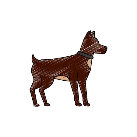 A dog pet icon image vector illustration design Çizim