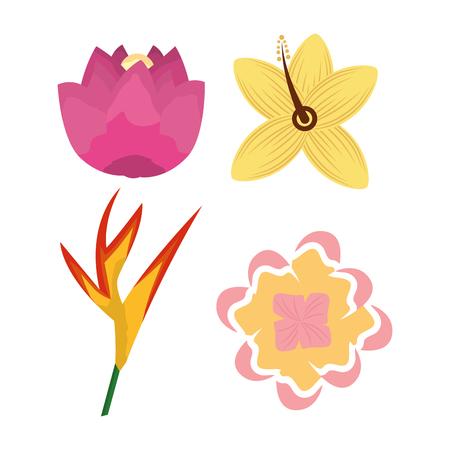 tropical differents flower flora set icons vector illustration Illustration