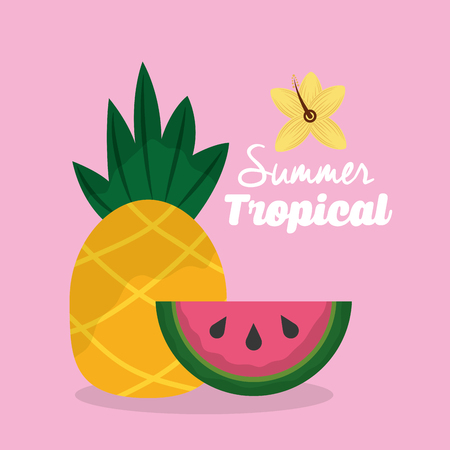 summer tropical fruits pineapple and watermelon vector illustration