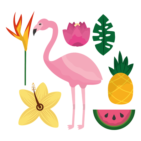 tropical flamengo hibiscus pineapple watermelon bird of paradise leaves vector illustration