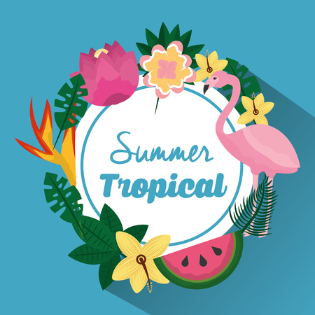 summer tropical beautiful flamengo exotic plants and fruit vector illustration