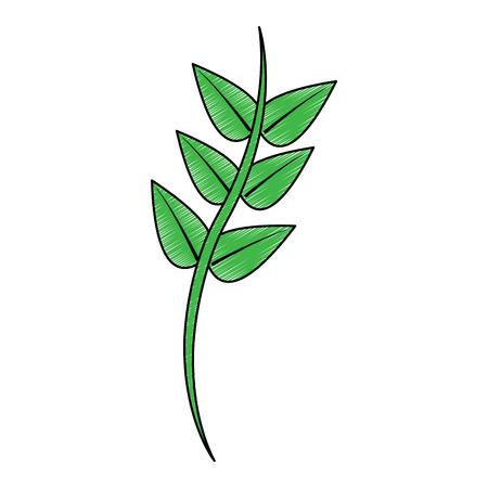 Branche décorative floral vert laisse plante icône illustration vectorielle pictogramme Banque d'images - 91422052
