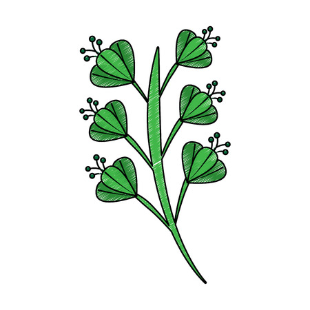 beautiful flower blossom with leaves vector illustration