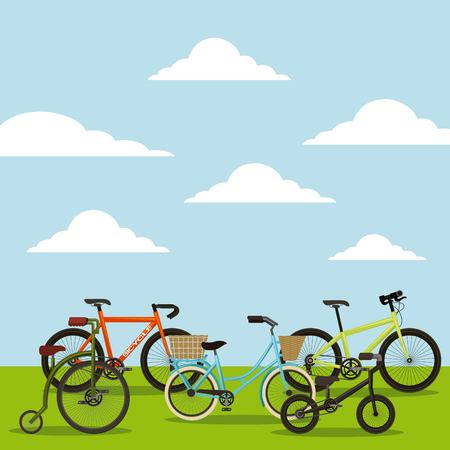 set of the different bicycles in the landscape vector illustration