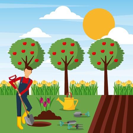 man planting tulip flowers in the garden vector illustration 일러스트