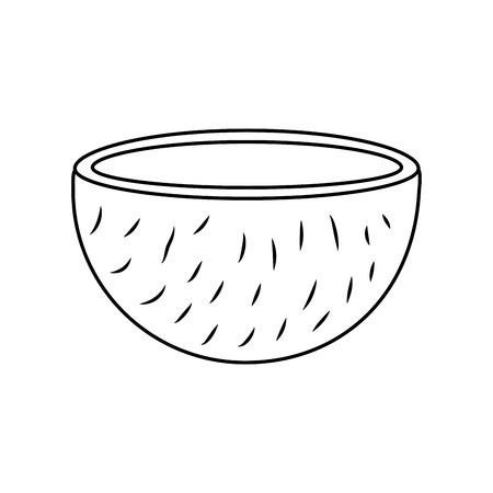 Slice coconut tropical fruit health nutrition food vector illustration