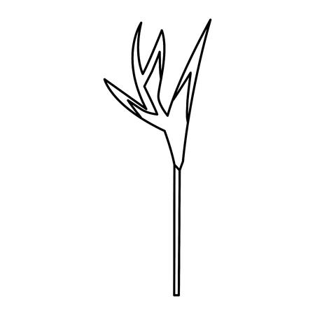 Uma ave tropical do paraíso flor exóticas ilustração vetorial natural Foto de archivo - 91507070