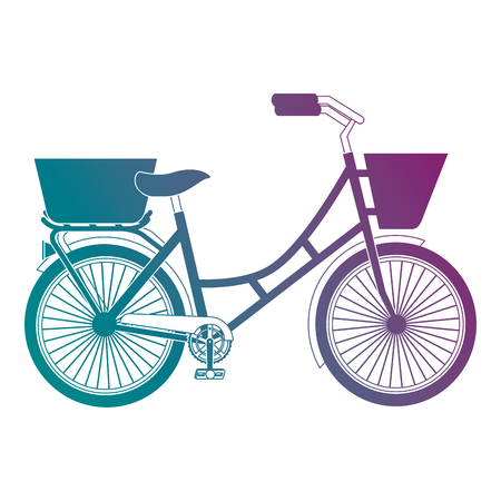 Antique bicycle with basket vector illustration design