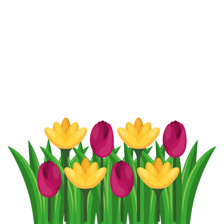 Beautiful flowers cultivated icon vector illustration design Reklamní fotografie - 91934603