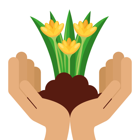 Hands with beautiful flowers cultivated icon vector illustration design Illustration