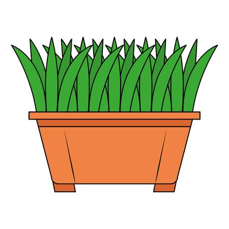 Grass in pot icon vector illustration design