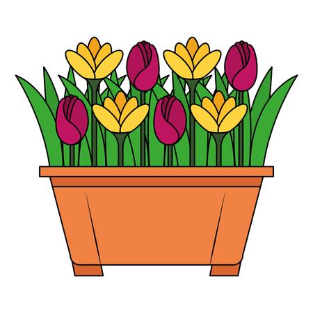 Beautiful flowers cultivated in pot vector illustration design Ilustração