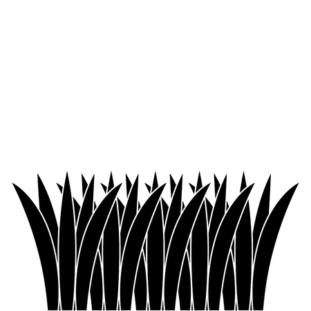 grass cultivated isolated icon vector illustration design Stok Fotoğraf - 91870902