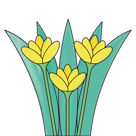 beautiful flowers cultivated icon vector illustration design Reklamní fotografie - 91871698
