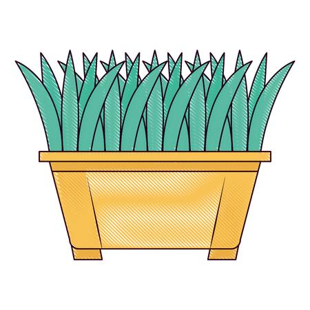 Gras in vector de illustratieontwerp van het pottenpictogram Stockfoto - 91881620
