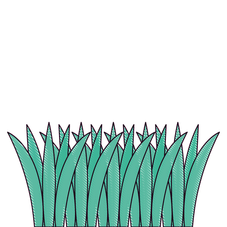 gras gekweekt geïsoleerd pictogram vectorillustratieontwerp