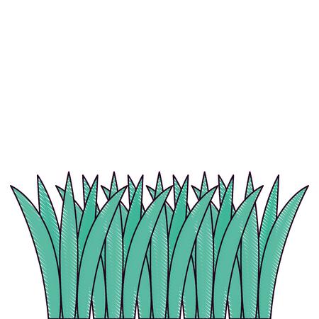 Gras gekweekt geïsoleerd pictogram vectorillustratieontwerp Stockfoto - 91872302
