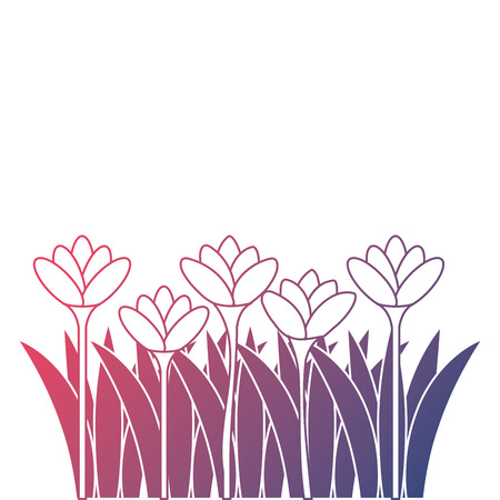 Beautiful flowers cultivated icon vector illustration design